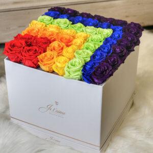 Pride Eternity Roses