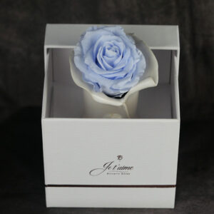 Single Eternity Rose in a ceramic vase by Via Dani
